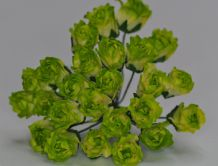 11mm MOSS GREEN IVORY CARNATION dianthus BUDS Mulberry Paper Flowers